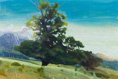 Caledonian Tree_100x125_2016